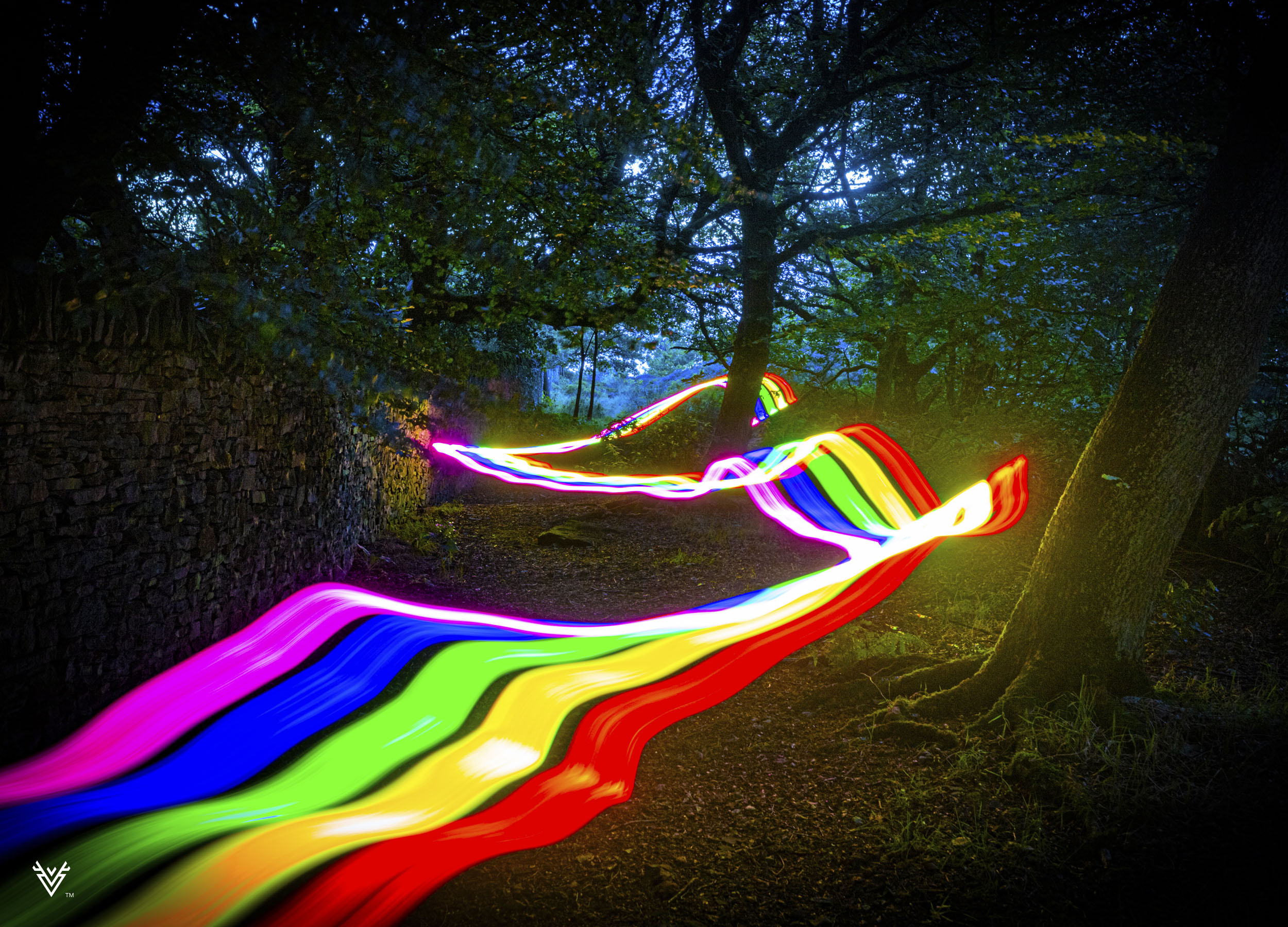 A rainbow running through a forest